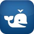 Beluga App Icon
